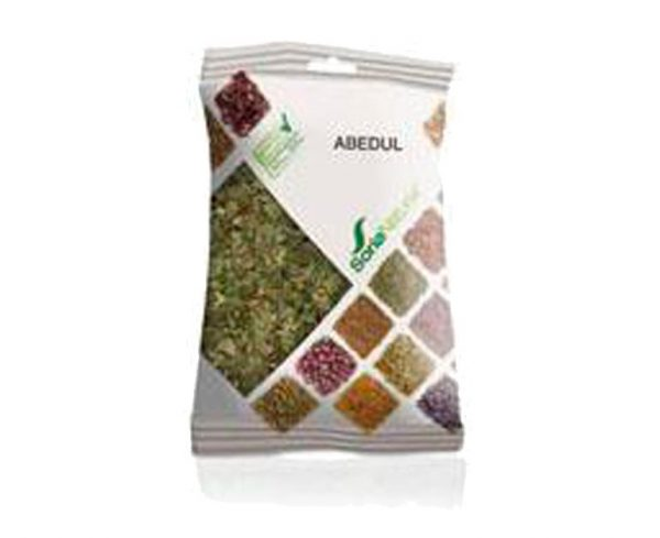 Abedul plantas en bolsa Soria Natural