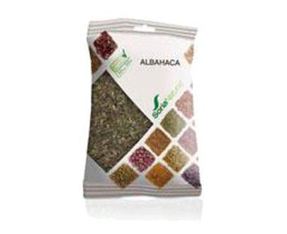 Albahaca plantas en bolsa Soria Natural