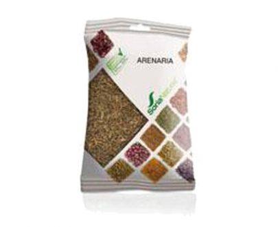 Arenaria plantas en bolsa Soria Natural