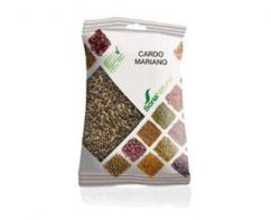 Cardo Mariano semillas plantas en bolsa Soria Natural