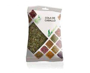Cola de Caballo plantas en bolsa Soria Natural