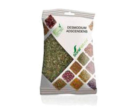 Desmodium Adscendens plantas en bolsa Soria Natural