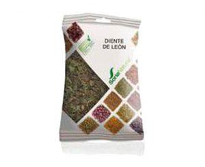 Diente de León plantas en bolsa Soria Natural