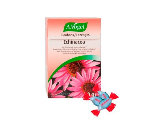 Echinacea caramelos A. Vogel