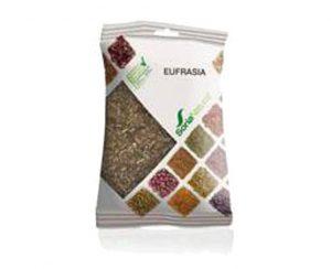 Eufrasia plantas en bolsa Soria Natural