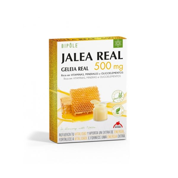 Jalea Real 500 mg Ampollas