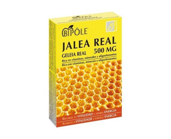 Jalea real adultos 500 mg Bipole