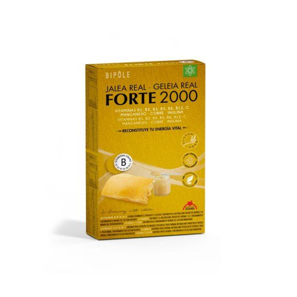 Jalea Real Forte 2000 Ampollas
