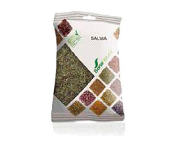 Salvia plantas en bolsa Soria Natural