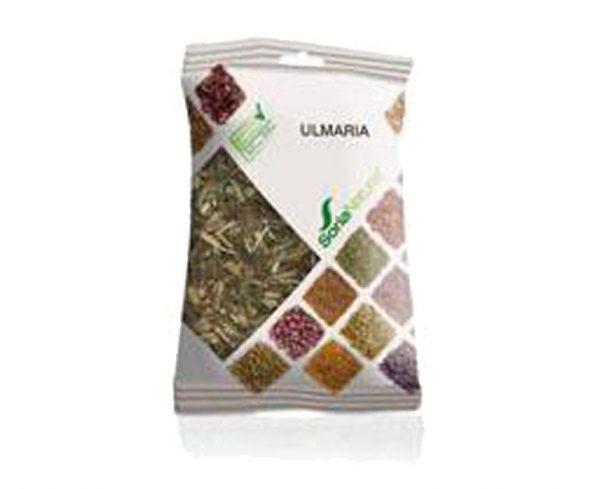 Ulmaria plantas en bolsa Soria Natural