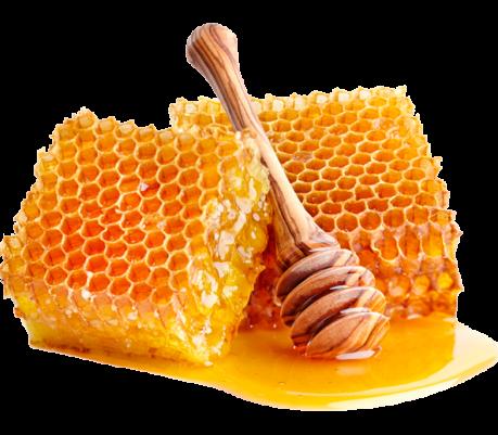 miel-abeja-de-oro-1