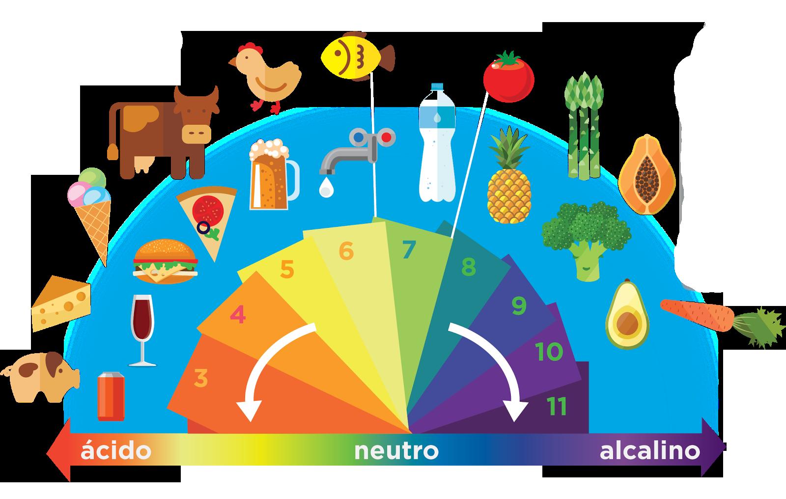 Diferencias entre dieta alcalina y dieta ácida